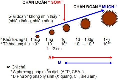 Giá trị của xét nghiệm định lượng CEA trong máu