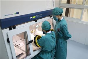 Hoạt động pha truyền thuốc điều trị ung thư tại Bệnh viện Việt Nam - Thụy Điển Uông Bí