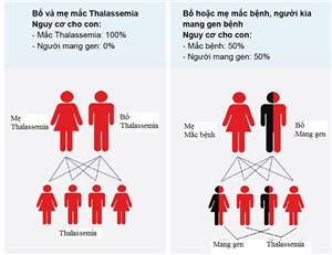 Phẫu thuật cứu sống sản phụ và thai nhi trên sản phụ có bệnh Thalassemia
