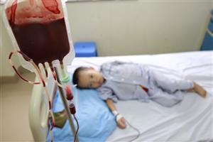 Xét nghiệm Điện di Huyết sắc tố sàng lọc người mang gen bệnh Thalassemia